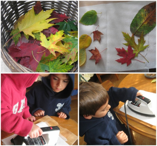 Collect, dry and iron with wax paper colourful fall leaves