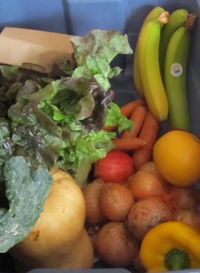organicsbox2