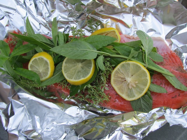 fresh salmon with herbs