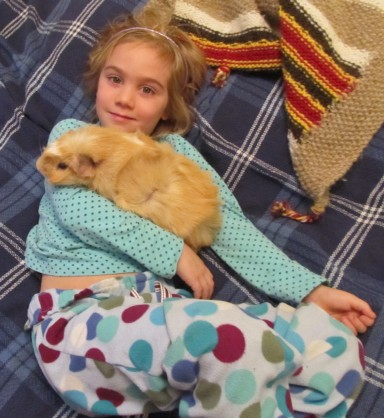 giant guinea pig and girl